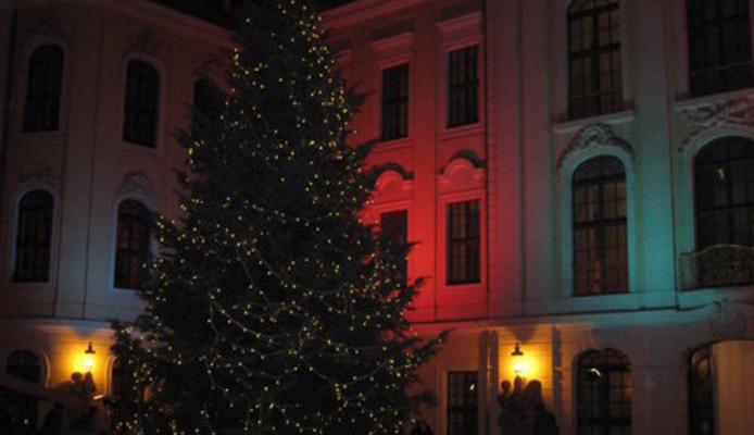 Edel, edel: Unsere Weihnachtsfeier im Kurländer Palais mit Miss Sophie